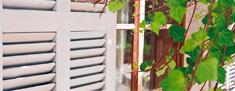 Farby do elewacji, okiennic,płotów i bram drewnianych